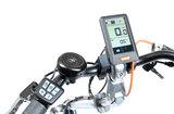 Van Raam Easy Rider Elektrisch_