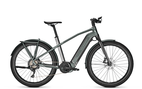 Endeavour 7.B Pure Herenfiets
